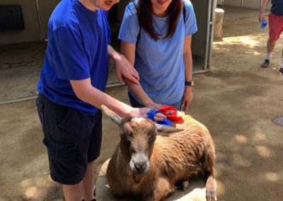 Two Dreams of America students petting a goat